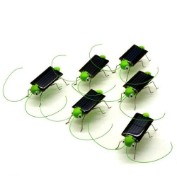 World Pride Solar Powered Grasshopper 5 pack